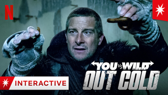 You vs. Wild: Out Cold on Netflix USA